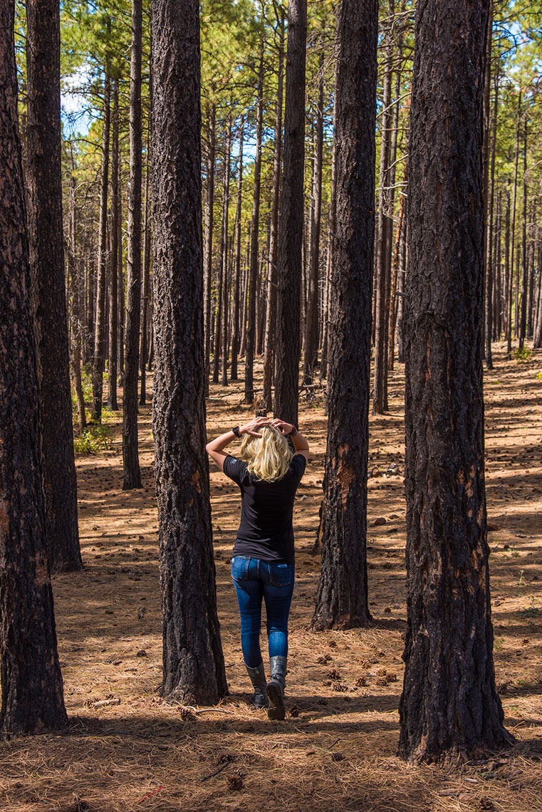 Coconino National Forest, Flagstaff, Arizona, Where to Explore Next Photoshoot, Lifestyle Adventure Photographer Daniel Britton